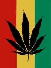 Jamaica's new marijuana law, is it legalization or new marketing strategy?